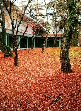 軽井沢プリンスホテルの紅葉写真