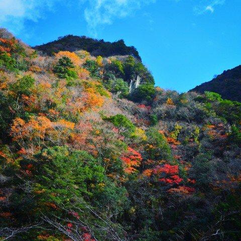香落渓の紅葉写真