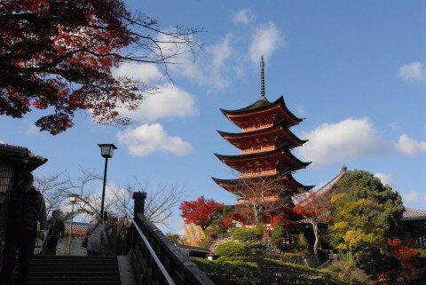 宮島・紅葉谷公園の紅葉写真