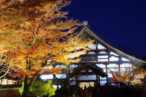 東山(高台寺)の紅葉写真