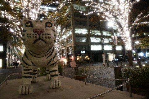 丸の内仲通り、東京駅周辺のイルミネーション写真