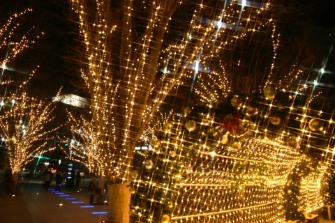 仙台トラストシティのイルミネーション写真