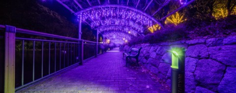 安城産業文化公園デンパークのイルミネーション写真