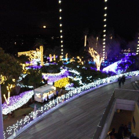 江の島サムエル・コッキング苑のイルミネーション写真