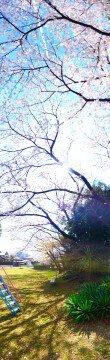 西平井ちびっこ広場