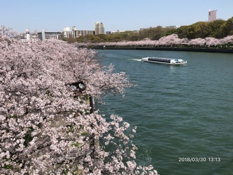 川崎橋からの撮影です