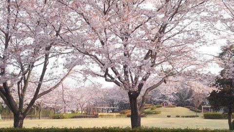 阿見町若栗総合運動公園