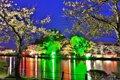 【桜・見頃】八鶴湖畔