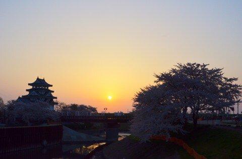 【桜・見頃】墨俣一夜城址公園・犀川堤