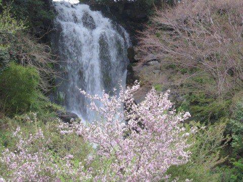 熊久保森林公園朝日滝