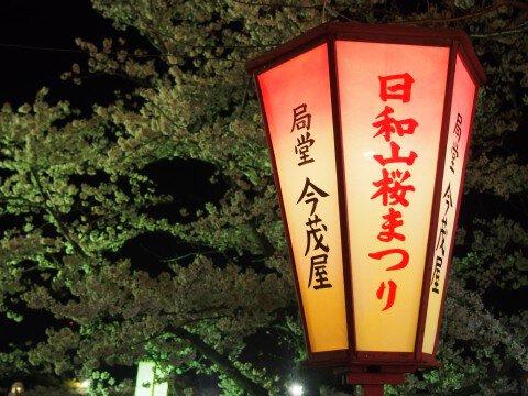【桜・見頃】日和山公園の桜名所写真