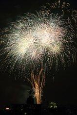 きんたさん投稿の岡崎城下家康公夏まつり 第71回花火大会
