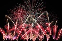 ブミさん投稿の刈谷わんさか祭り2019花火大会