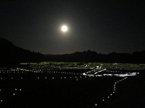 田染荘小崎地区のイルミネーション写真