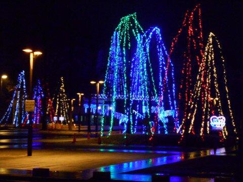 南長野運動公園のイルミネーション写真
