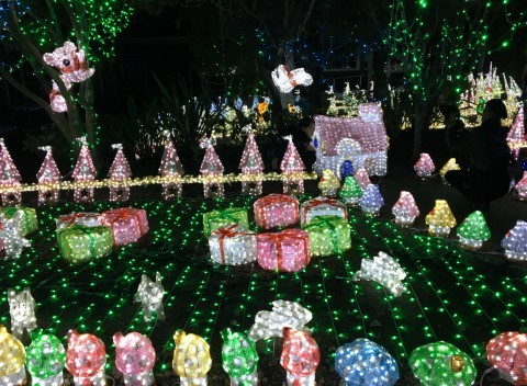 神戸イルミナージュのイルミネーション写真