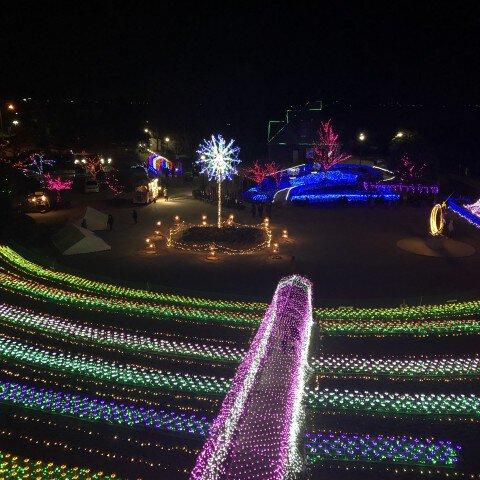 霞ヶ浦総合公園のイルミネーション写真