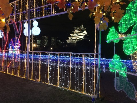 大阪城公園のイルミネーション写真