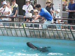 姫路市立動物園 姫路動物愛護フェスティバル