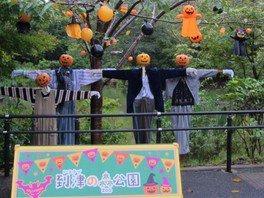 到津の森公園 マジカルハロウィン