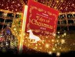 中山競馬場クリスマスイルミネーション2019 Tales of Christmas