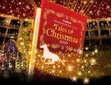 【2020年度開催なし】中山競馬場クリスマスイルミネーション2019 Tales of Christmas