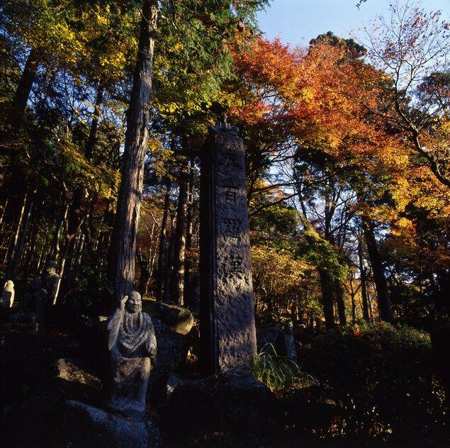 長安寺(神奈川県)の紅葉