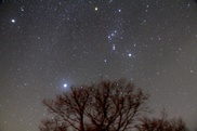 星のソムリエと楽しむ冬の星空観察会(2月)