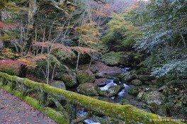 王滝渓谷の紅葉