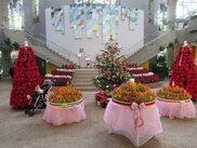特別展「Xmasフェア」~熱帯植物で飾るクリスマス展~
