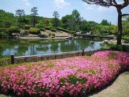 びわこ文化公園 サツキまつり