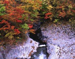 【紅葉・見ごろ】中津川渓谷