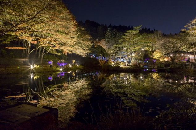 六甲高山植物園の紅葉