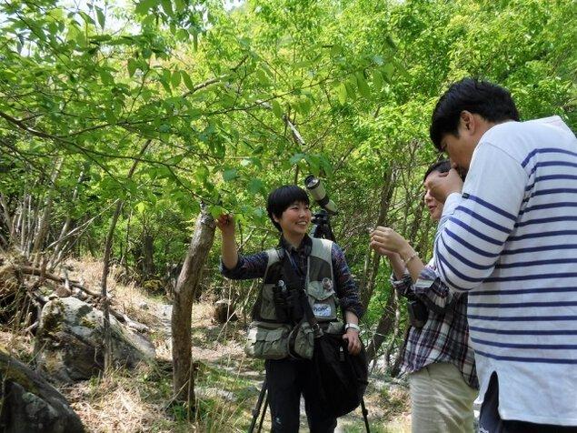 ゴールデンウィーク 自然の専門家と春の森を楽しもう!