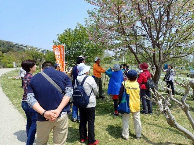 淡路島国営明石海峡公園 公園ボランティアとゆく フラワーガイドツアー<中止となりました>