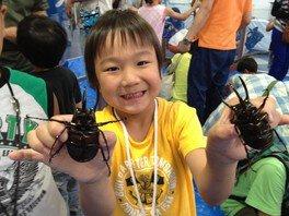 世界のカブトムシ大集合!おもしろ昆虫展2018