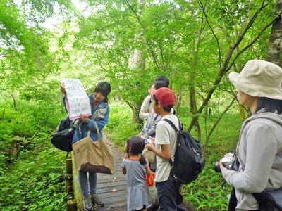 ガイドウォーク ~森のお散歩~