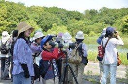 国営昭和記念公園 野鳥観察会(6月)