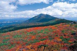 【紅葉・見ごろ】三ツ石山