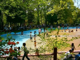 森林公園 水遊び場
