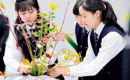 Ikenobo花の甲子園2019(愛知県大会)