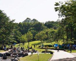 森林公園 渓流広場での水遊び