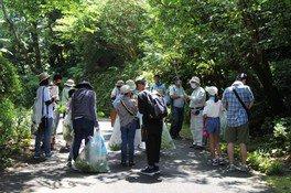 夏休み特別企画「植物観察と標本作り」