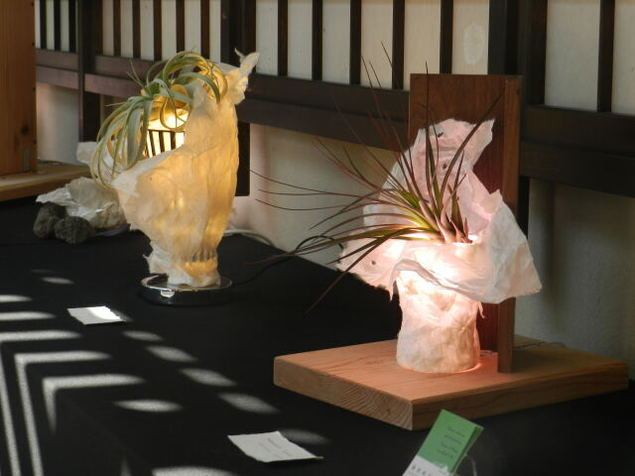 アートフレーム 和紙と光と植物