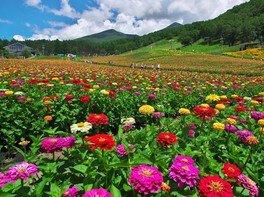 富士見高原リゾート 花の里 オープン