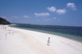 湖水浴 白ひげ浜水泳・キャンプ場