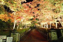 松雲山荘紅葉ライトアップ