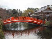 街中のご利益巡り 神泉苑から特別公開の善想寺、金ぴか鳥居の御金神社まで