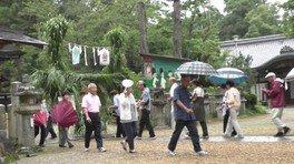大和神社 茅の輪くぐり