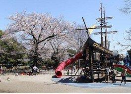 光綾公園の桜